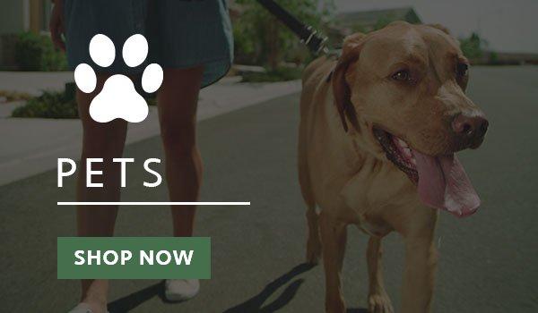 CBD American Shaman of Midlothian Pets Shop Now Button